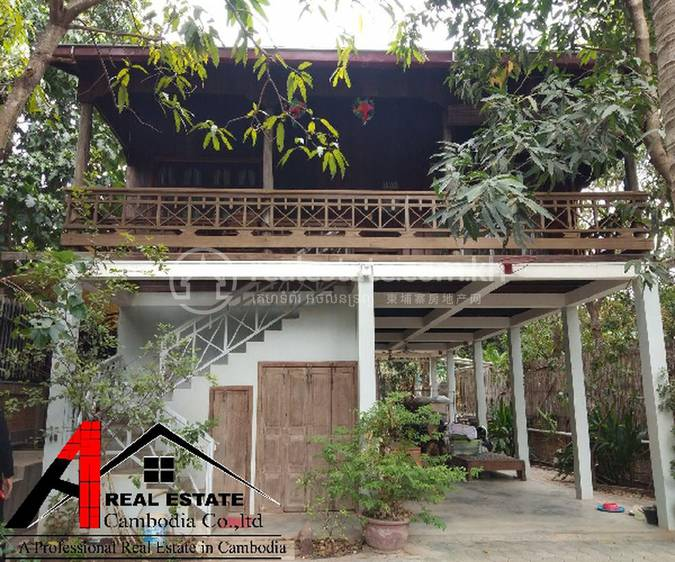 residential House for rent in Siem Reab ID 106219 1