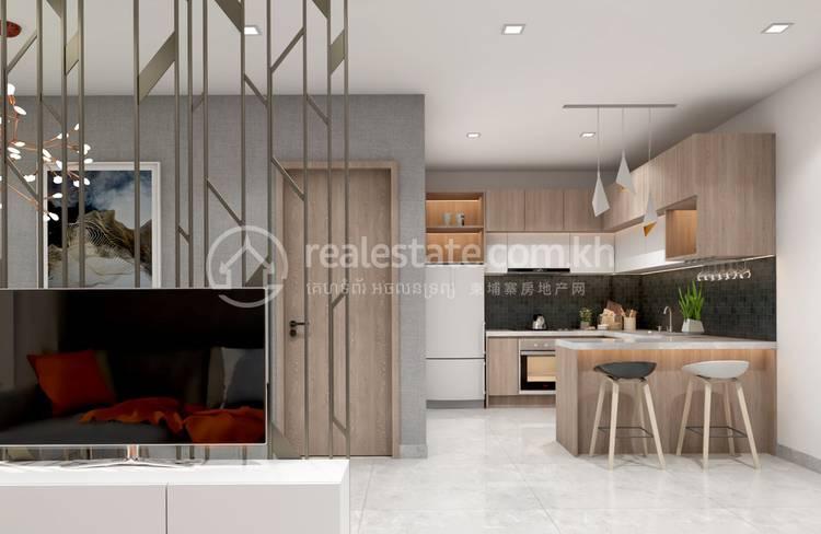 residential Condo1 for sale2 ក្នុង Svay Dankum3 ID 1103314 1