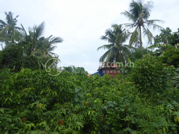 residential Land/Development for sale in Puk Ruessei ID 112229 1