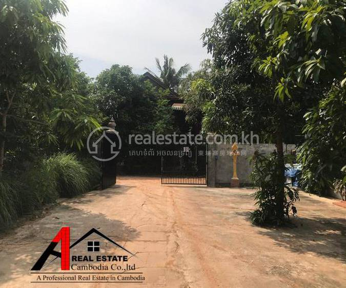 residential House for rent in Svay Dankum ID 117879 1