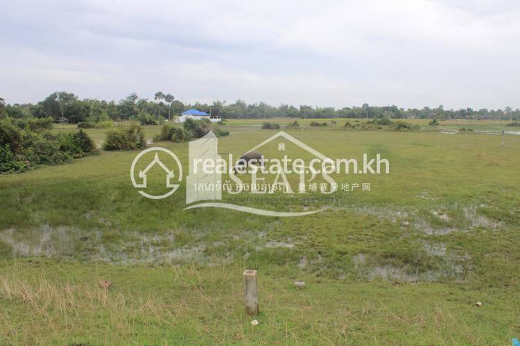 residential Land/Development for sale in Siem Reap ID 122969 1