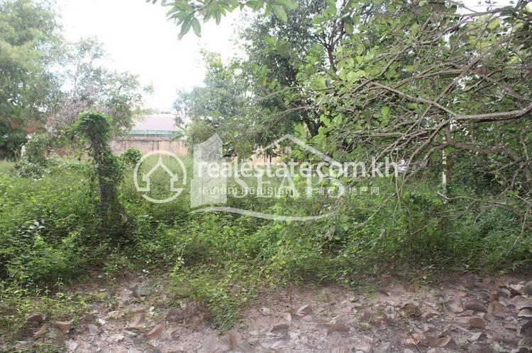residential Land/Development for sale in Siem Reap ID 126835 1