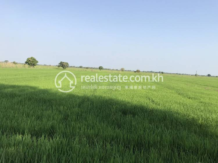 residential Apartment for rent in Chheu Teal ID 127090 1