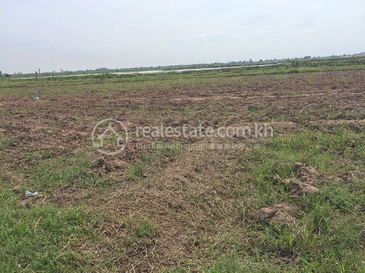 residential Land/Development for sale in Svay Chrum ID 127330 1