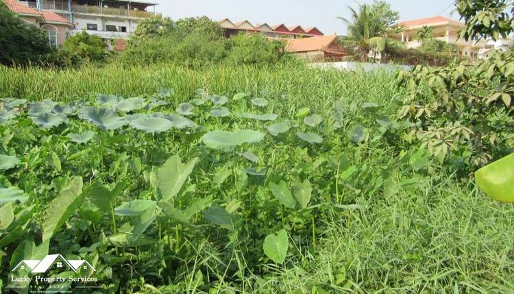 land Residential for sale in Phsar Daeum Thkov ID 10044 1