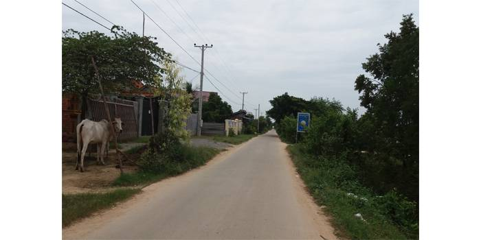 land Residential for rent in Dangkao ID 28141 1