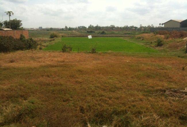 land Residential for sale in Phnom Penh Thmey ID 17146 1