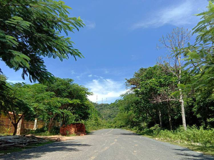 residential Land/Development for rent in Kep ID 85347 1
