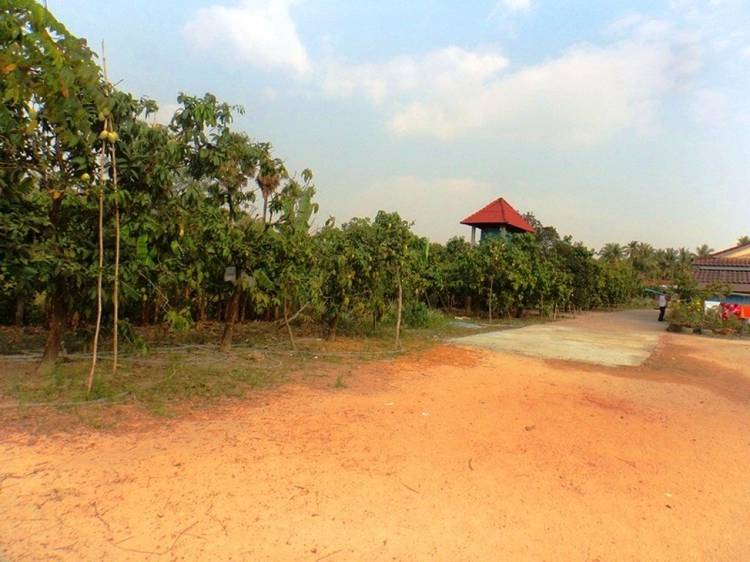 land Residential for sale in Cheung Kou ID 22893 1