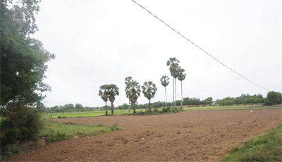 land Residential for sale in Siem Reab ID 5272 1