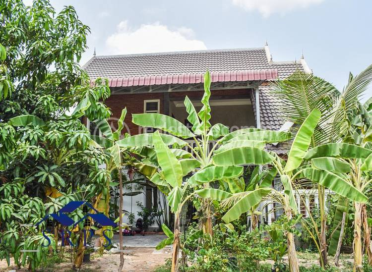 residential House for rent in Siem Reab ID 101939 1