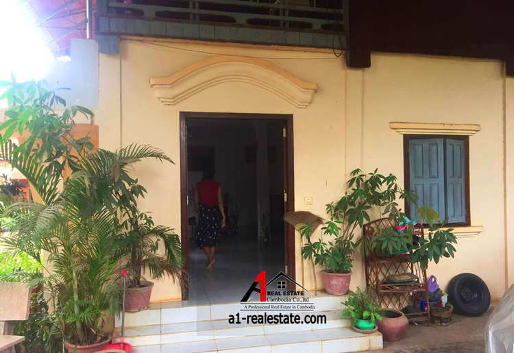 residential House for rent in Siem Reab ID 81465 1