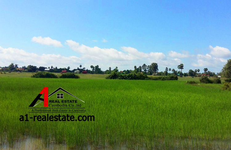 residential Land/Development for sale in Siem Reab ID 85207 1