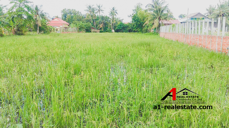 residential Land/Development for sale in Siem Reab ID 85570 1