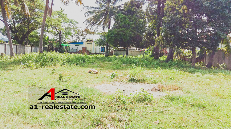 residential Land/Development for sale in Siem Reab ID 85680 1