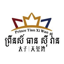 Prince Tian Xi Wan
