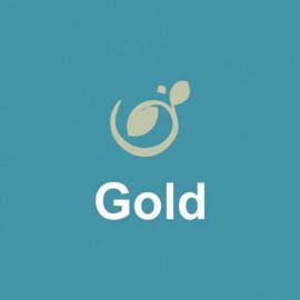 Gold1 apartment