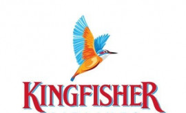 Kingfisher Angkor Apartment